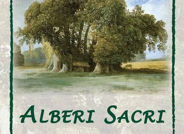 ASSALTO ALLE FORESTE