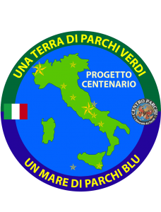 logo centenario stelline